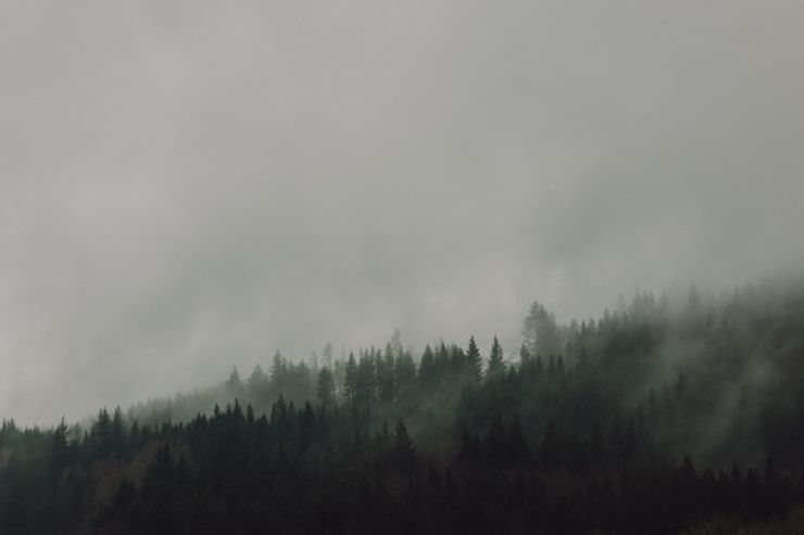 ZlataYev_0663